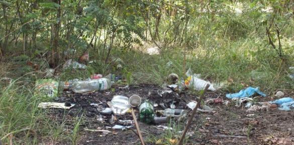 Черкаське узбережжя Дніпра потребує прибирання (ВІДЕО)