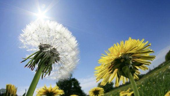 Черкаські метеорологи прогнозують на завтра комфортну погоду