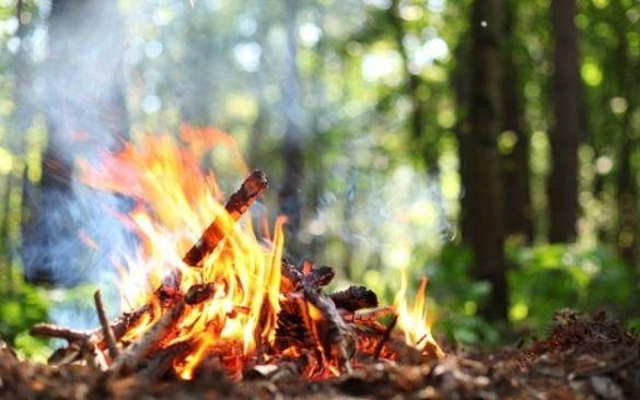 Пожежна небезпека: черкащанам заборонили розводити багаття в лісі
