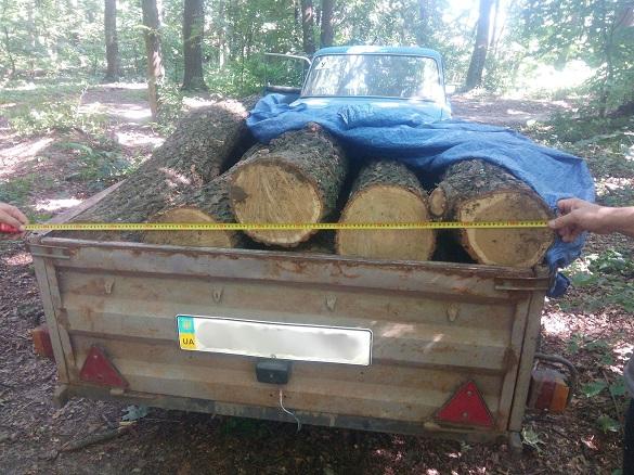 На Шполянщині впіймали лісокрадіїв (ФОТО)