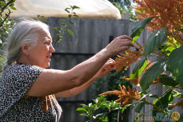 Понад сто різноманітних видів рослин вирощує жінка у Золотоноші (ФОТО)