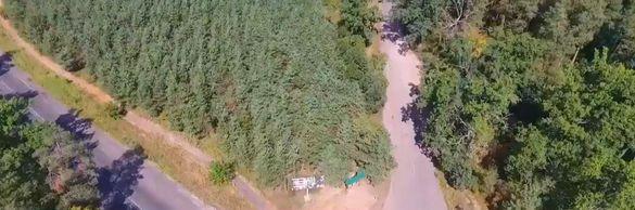 Пожежі у черкаських лісах вистежують із квадрокоптера (ВІДЕО)