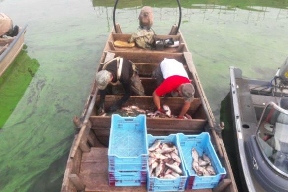 Черкаські браконьєри завдали державі збитків на суму понад сто тисяч гривень