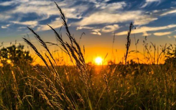 Синоптики прогнозують помірно теплу і суху погоду в Черкаській області