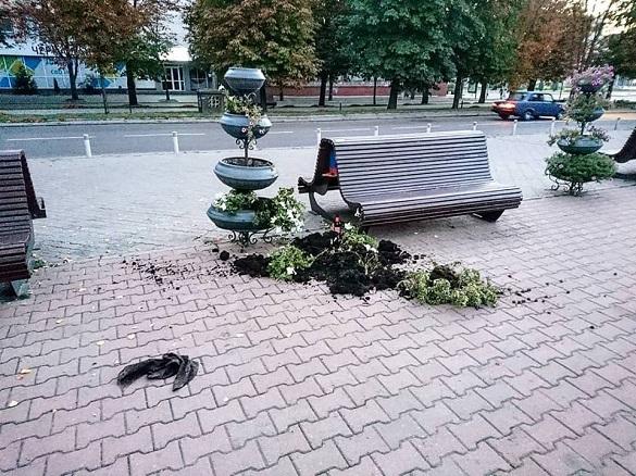 Біля черкаської мерії, як і рік тому, невідомі потрощили вазони з квітами
