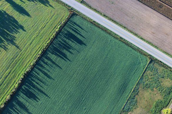 П'ятьом школам на Черкащині відновили право користуватися землею