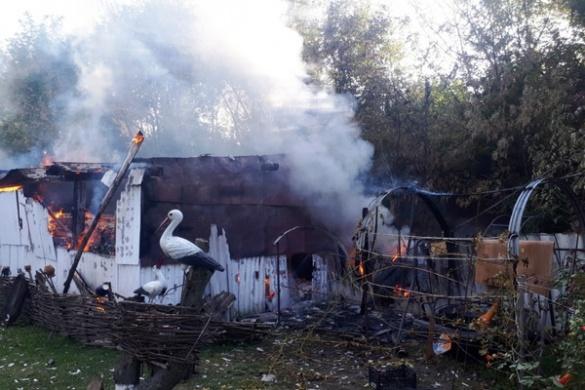 На Черкащині діти спалили сарай і три тони сіна (ФОТО)