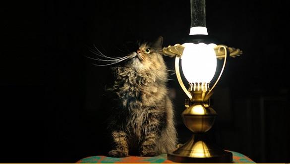 Жителів Черкас та області попереджають про можливе зникнення світла через негоду