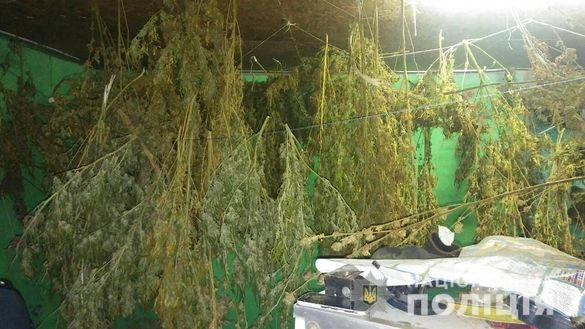 На Черкащині спіймали наркоділка з кілограмами канабісу