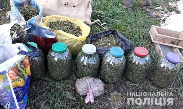 Велику партію канабісу вилучили в наркоторговця у Черкаській області (ФОТО)