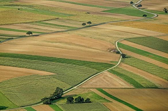 На Черкащині державі повернули землю вартістю понад півтора мільйона гривень