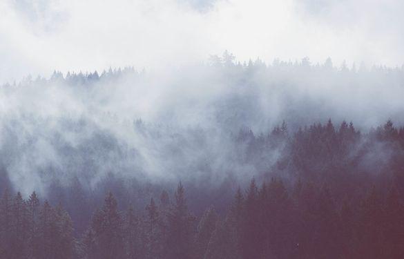 Синоптики прогнозують заморозки й тумани на Черкащині