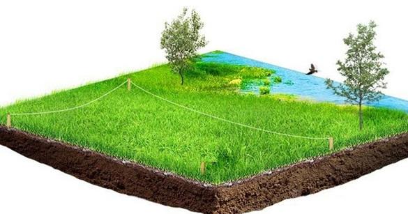 Хотіли збудувати дачу: державі повернуто земельні ділянки на березі Дніпра