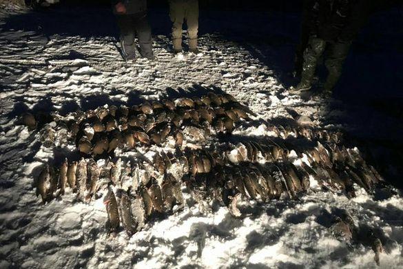 Черкаський рибоохоронний патруль виявив за тиждень понад сотню порушень
