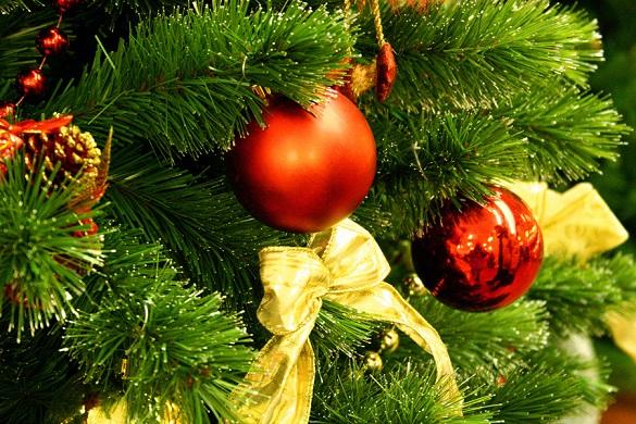 Як і коли в Черкасах відкриватимуть новорічну ялинку?