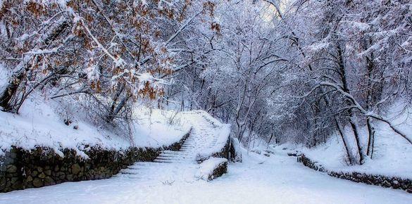 Після снігопадів на Черкащині посиляться морози