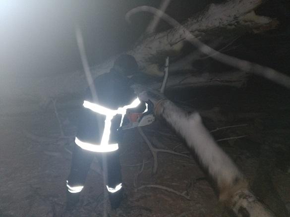 Не проїхати: на Черкащині звільняли дороги від повалених дерев