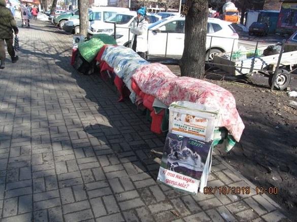 У Черкасах пропонують встановити павільйони для зоозахисників (ФОТО)