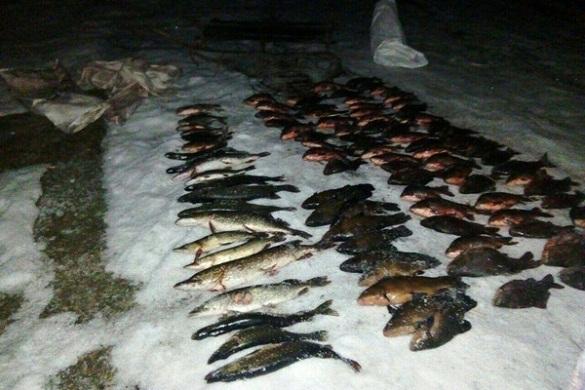 На Черкащині браконьєри наловили риби на майже 8 тисяч гривень