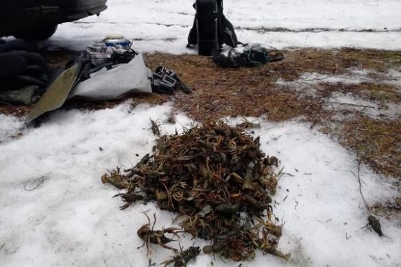 Браконьєри на Черкащині наловили раків на майже шість тисяч гривень (ФОТО)