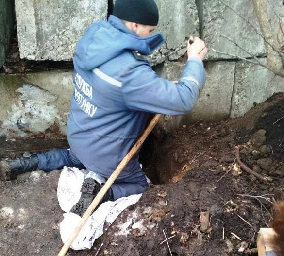 На Черкащині рятували з-під бетону новонароджених цуценят (ФОТО)