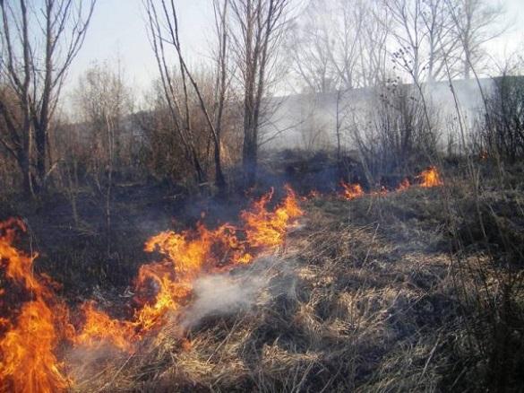 Протягом доби на Черкащині рятувальники гасили підпалену траву шість разів