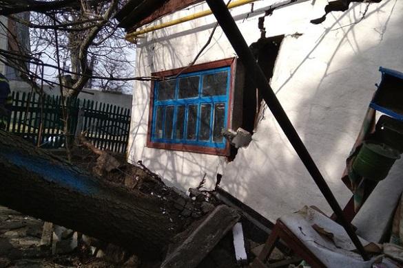 На Черкащині ялина повністю зруйнувала будівлю (ФОТО)
