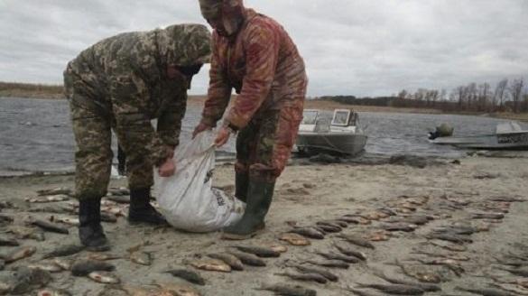 На Черкащині браконьєри наловили риби на понад 45 тисяч гривень