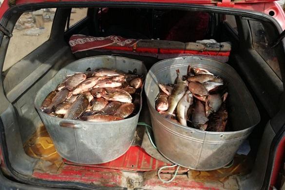 На Черкащині чоловік незаконно наловив риби на майже дев'ять тисяч гривень