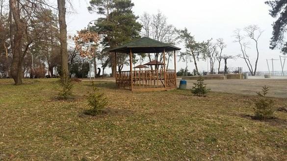 У черкаському парку висадили більше сотні дерев (ФОТО)