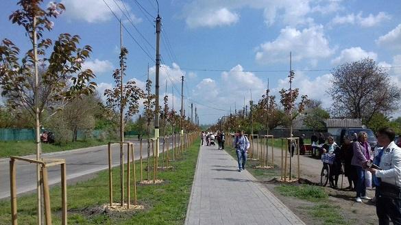 У Кам'янці відкрили найдовшу в Україні алею сакур (ФОТО)