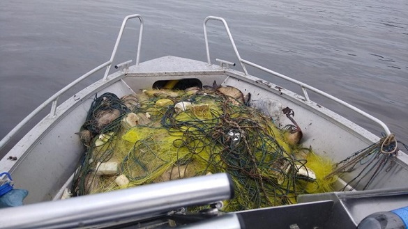 На Черкащині затримали браконьєрів, які наловили риби на майже 25 тисяч гривень