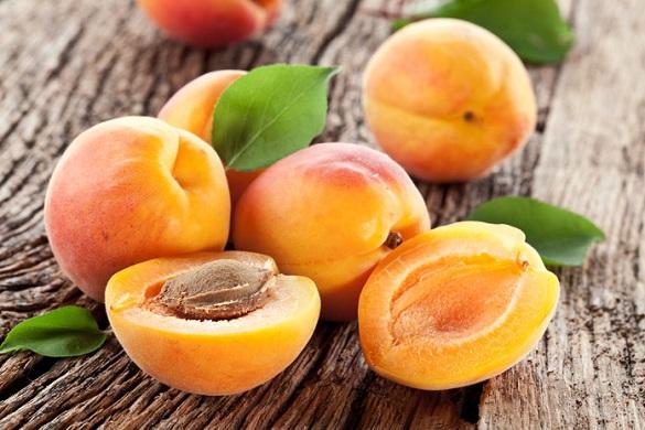 Черкащина цього року може залишитися без абрикос (ВІДЕО)
