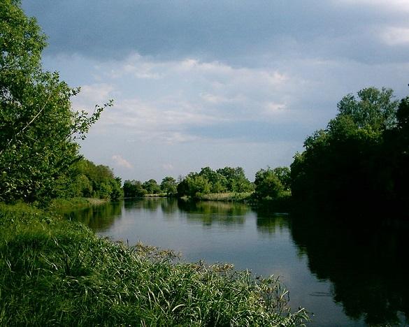 До річки Рось, яка тече і через Черкаську область зокрема, потрапила тонна хімікатів