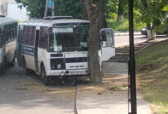 У середмісті Канева маршрутка врізалася у дерево