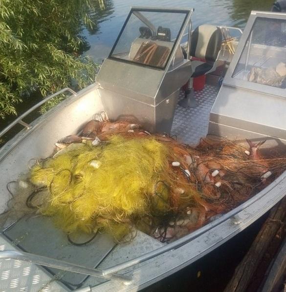 На Черкащині браконьєри наловили риби на понад 5 тисяч гривень