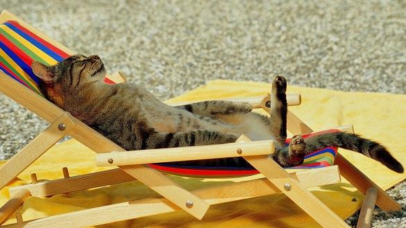 Спека на Черкащині знову посилюється