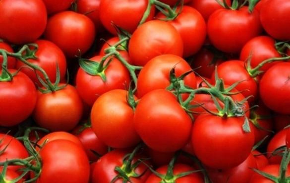 У Черкасах овочі та фрукти ростуть без ґрунту (ВІДЕО)