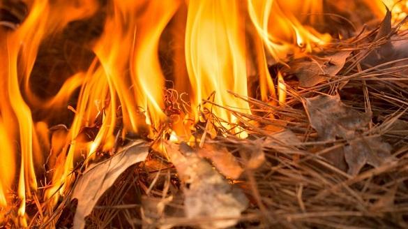 Черкащан попереджають про високий рівень пожежної небезпеки