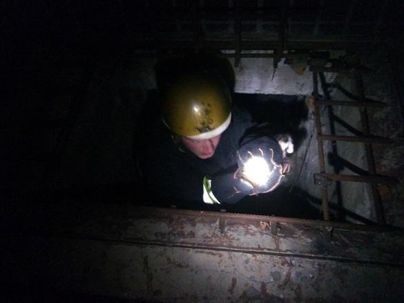 У Черкасах із ями діставали вусатих (ФОТО)