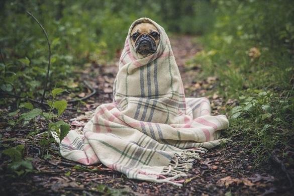 У Черкасах встановлено рекорд мінімальної температури