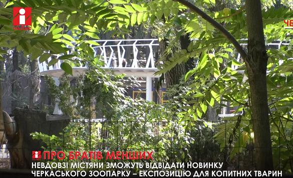 Незабаром у Черкаському зоопарку відкриють нову експозицію (ВІДЕО)