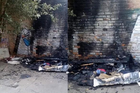 В Умані невідомі спалили будки, де проживали цуценята (ФОТО)