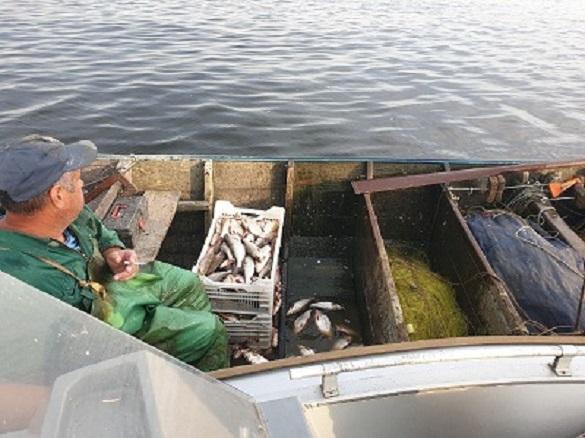 На Черкащині браконьєр наловив риби на майже 200 000 гривень (ФОТО)