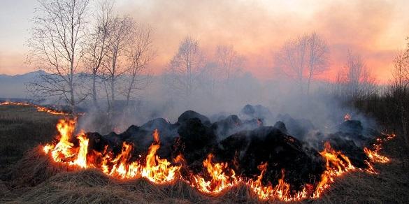 У Черкаській області оголосили надзвичайний рівень пожежної небезпеки