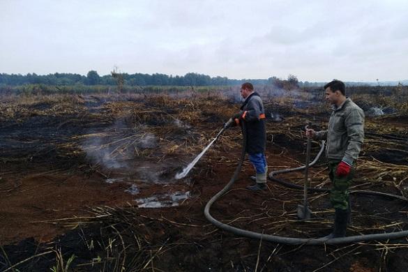У Вергунах третю добу триває пожежа на торфах (ФОТО)