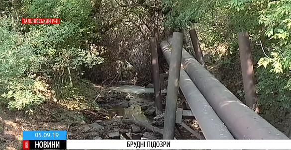 Цукровий завод у Тальному підозрюють у забрудненні водойми (ВІДЕО)