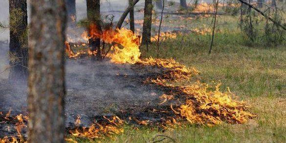 Синоптики повідомили про високий клас пожежної небезпеки над Черкащиною