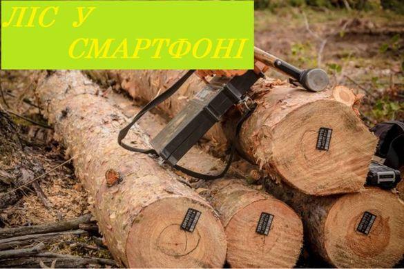 Ліс у смартфоні: на Черкащині законність вирубки лісів можна буде відслідковувати онлайн