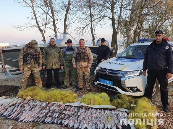 На Черкащині незаконно виловили риби на суму понад 38 тисяч гривень